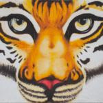 Tiger (zoom)